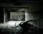 Dark Creative_14