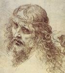 Leonardo da Vinci_11