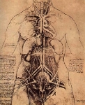 Leonardo da Vinci_16