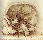 Leonardo da Vinci_24