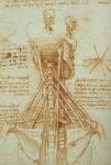 Leonardo da Vinci_29