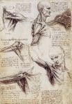 Leonardo da Vinci_36