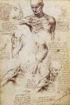 Leonardo da Vinci_38