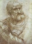 Leonardo da Vinci_44