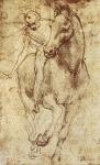 Leonardo da Vinci_47