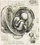 Leonardo da Vinci_55