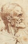 Leonardo da Vinci_9